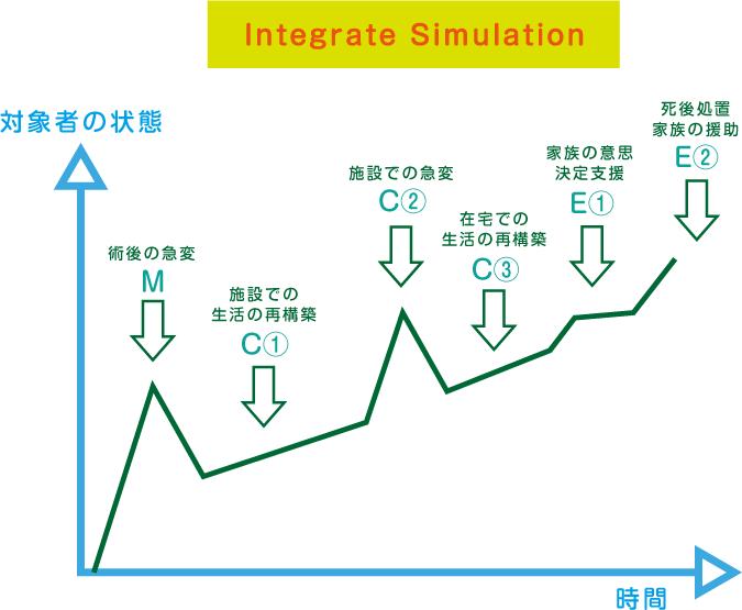 Integrate Simulation